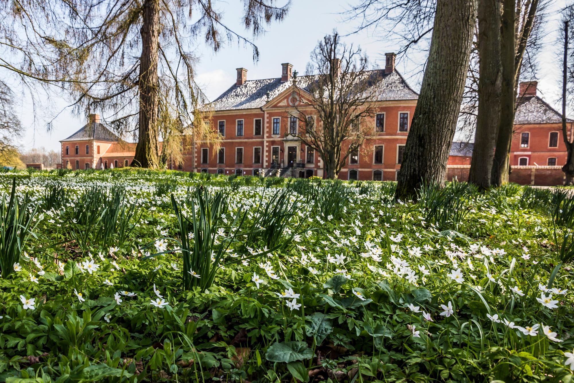 Der Schlosspark in Frühlingsfarben – Schöner Kontrast zum roten Ziegelbau von Schloss Bothmer