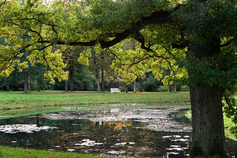 Herbstlicher Schlosspark