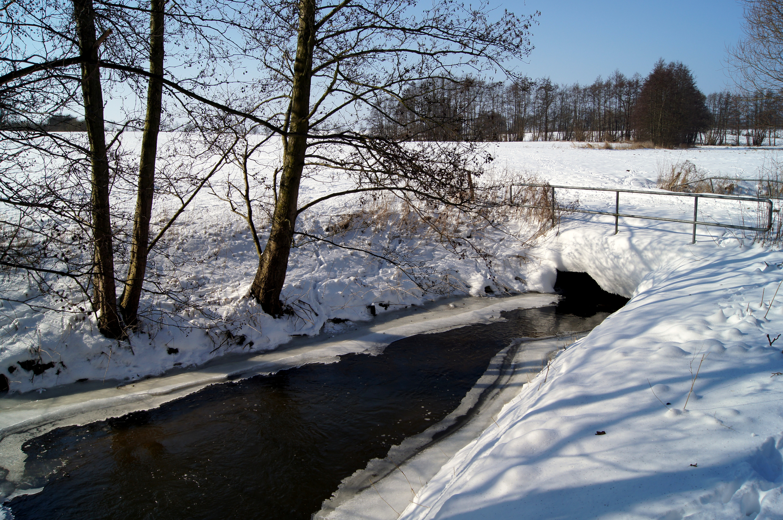 Winterlandschaft - Niederklützer Wiesen