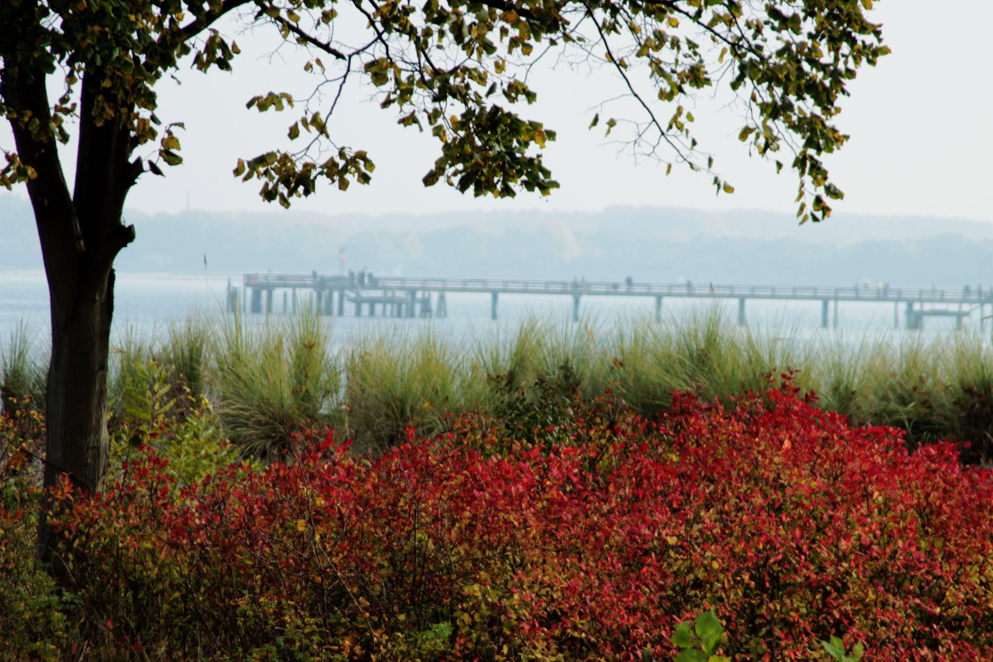 Blick zur Seebrücke in Boltenhagen